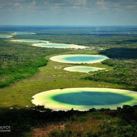 "Expo ""La forêt du Yucatán vue du ciel"""